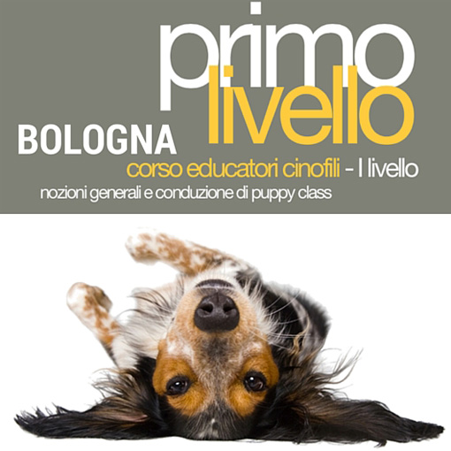 educatori_bologna