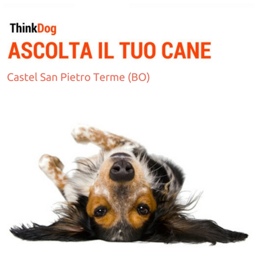 Castel San Pietro Terme (BO)